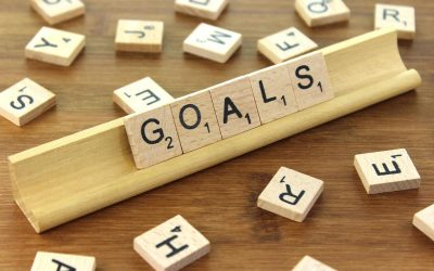 Goals and our ideal goats